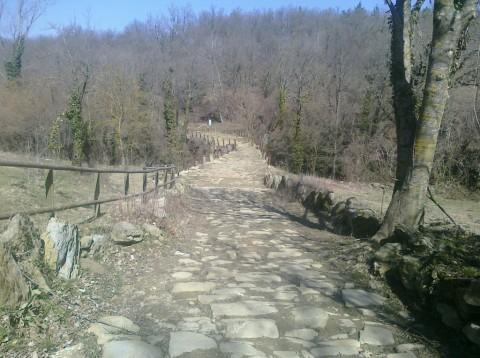 Caminando por antiguos senderos