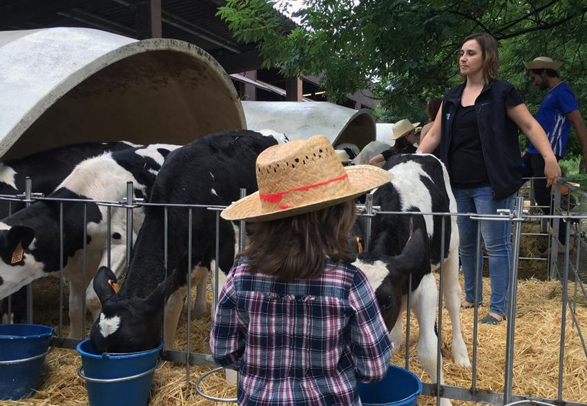 Niña con vacas - La Fageda Fundació