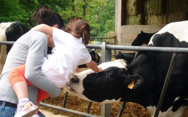 Madre e hija con vacas - La Fageda Fundació