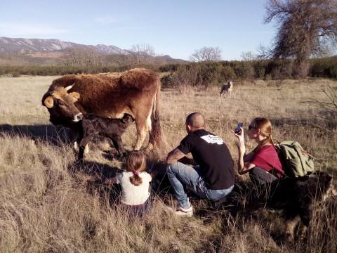 Agroturismo en Casa Las Lucías