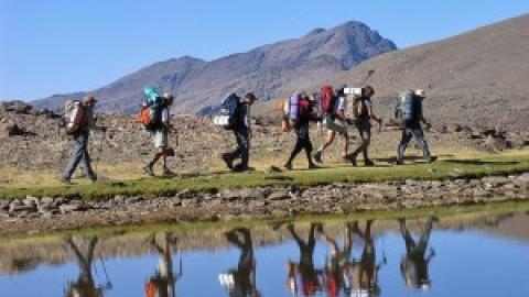 Estudio de mercado revela una creciente demanda en turismo responsable