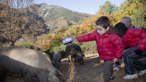 Agroturismo en Casa Rural Baños