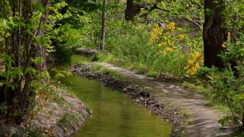 Ruta del agua en Sierra Nevada: Las arterias de La Alpujarra