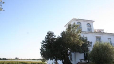 Hotel Toruño