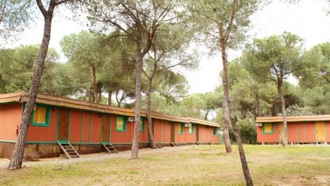Camping Dehesa Nueva