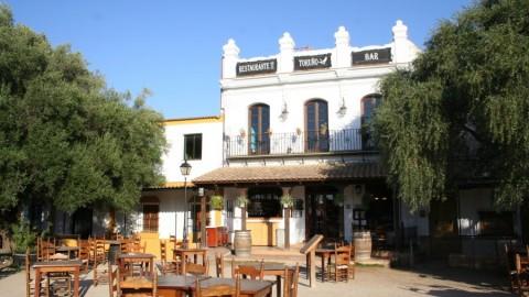 Restaurante Toruño