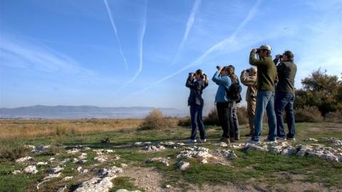 Dónde hacer Ecoturismo en España