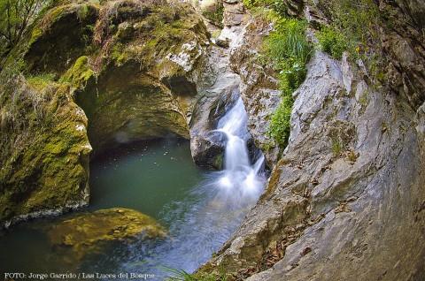 Sierra de Aracena y Picos de Aroche, un tesoro entre encinas milenarias y castaños centenarios