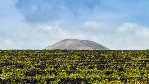 Reserva de la Biosfera de Lanzarote
