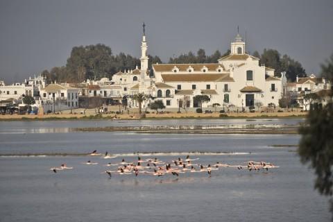 Ecoturismo en Doñana, contado por el tercer ganador del sorteo SoyEcoturista