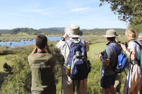 Descubre la Menorca Ornitológica