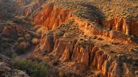 Donde Sierra Nevada se sumerge en el desierto