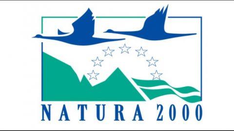 La Asociación de Ecoturismo en España es miembro del Órgano de Coordinación Nacional del Sistema de turismo de naturaleza en la Red Natura 2000