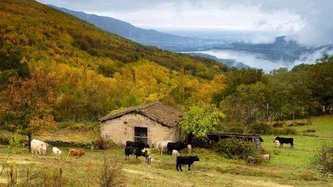 El Valle del Ambroz inicia el camino para adherirse al Club Ecoturismo en España