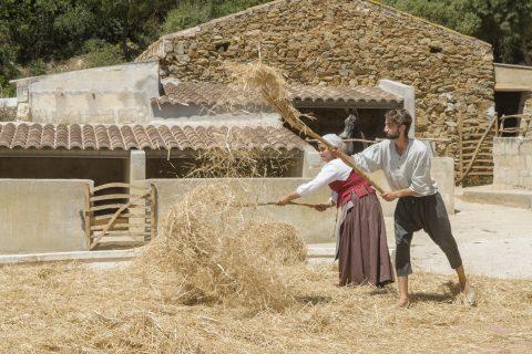Espectáculo de las tareas del campo de Menorca en vivo