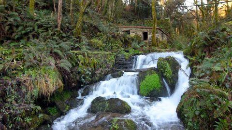 5 destinos de ecoturismo que querrás visitar este verano