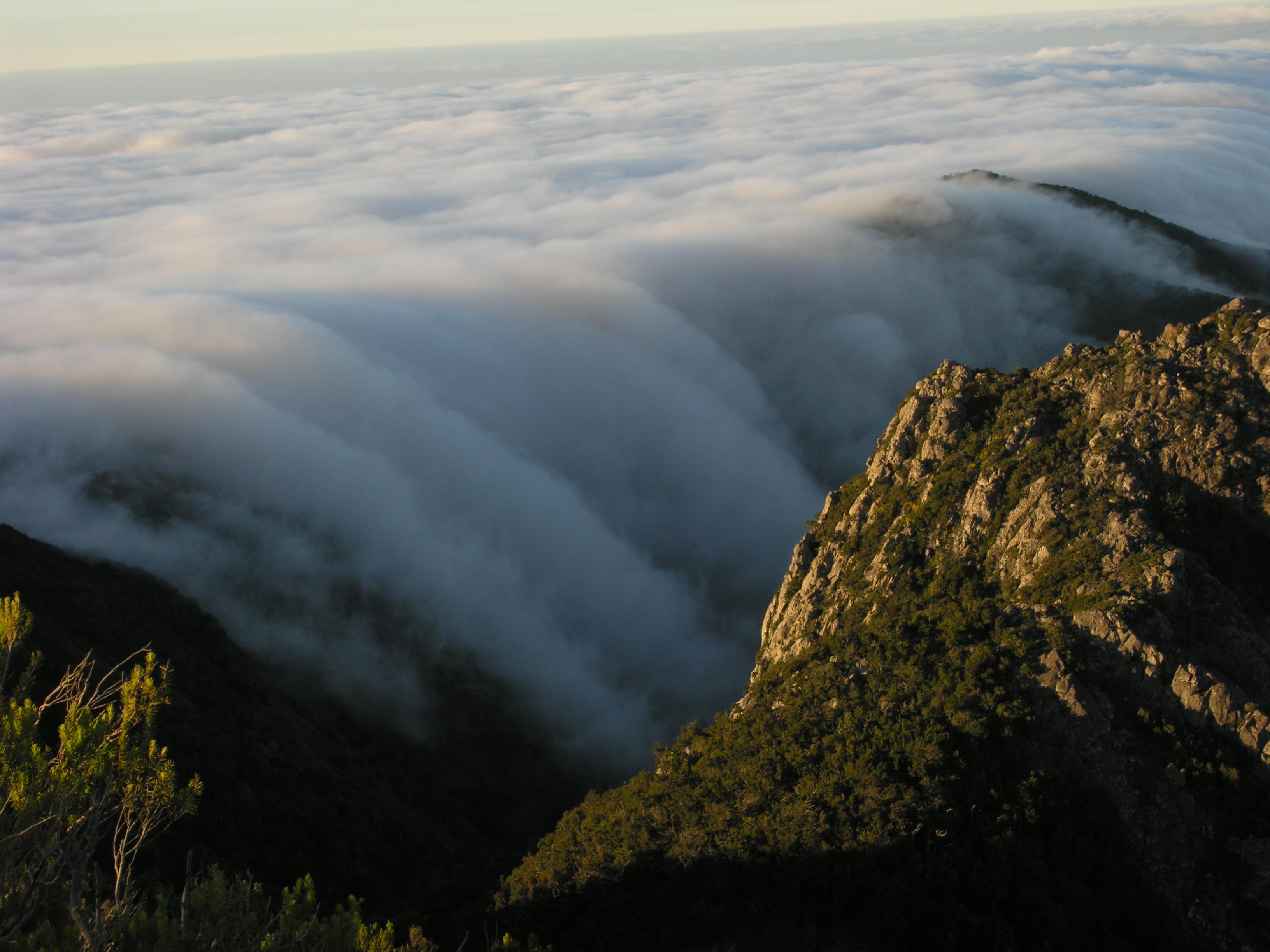 Reserva de la Biosfera de La Gomera @soyecoturista Club Ecoturismo en España