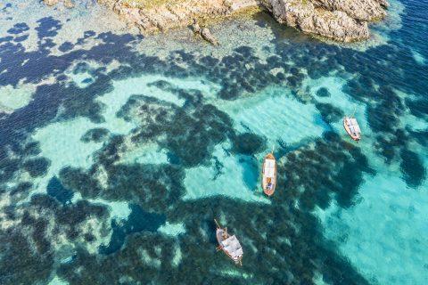 Este verano disfruta con estas 6 experiencias marítimas de ecoturismo