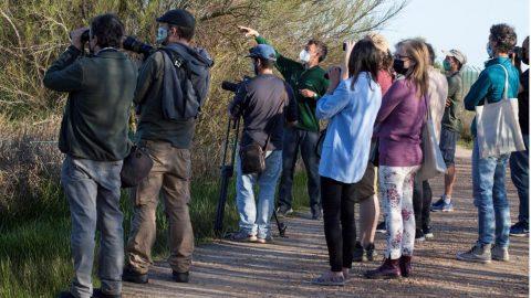 Informe sobre la oferta de ecoturismo en España 2020