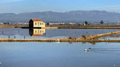 Sumérgete en la naturaleza con estos 11 alojamientos rurales en Delta del Ebro