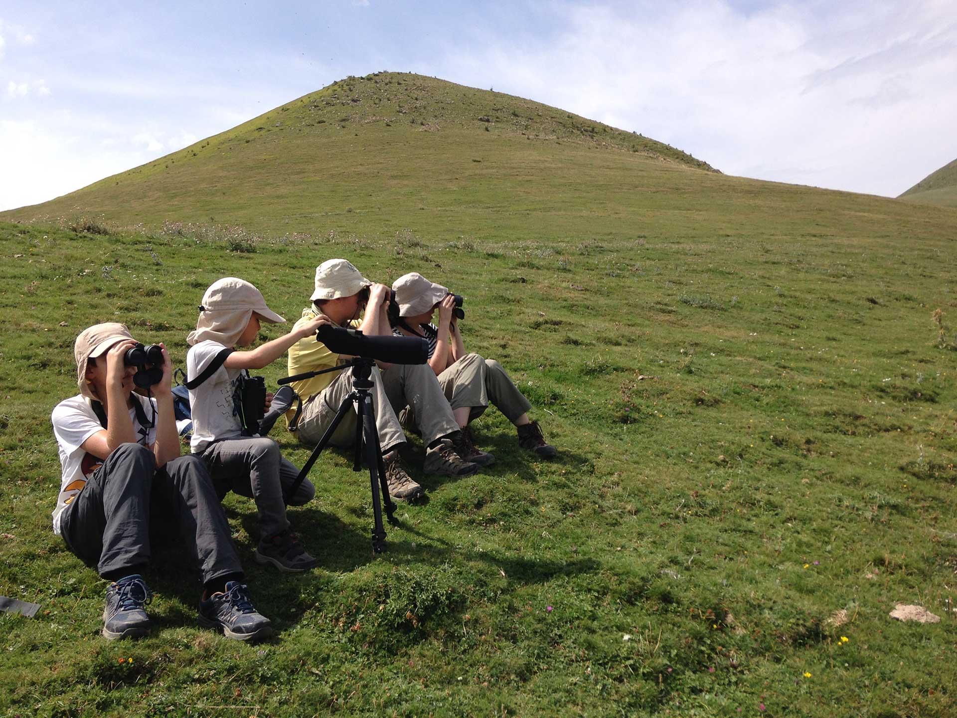 Experiencias birdwatching ecoturismo Ordesa y monte perdido