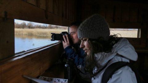 Birdwatching: o el arte de conocer distintas especies de aves gracias a estas experiencias únicas
